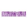 Logo CarrieAlong nettbutikk som selger vesker
