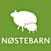 Logo Nøstebarn nettbutikk som selger  klær i ubehandlet ull og i ull/silkeblanding